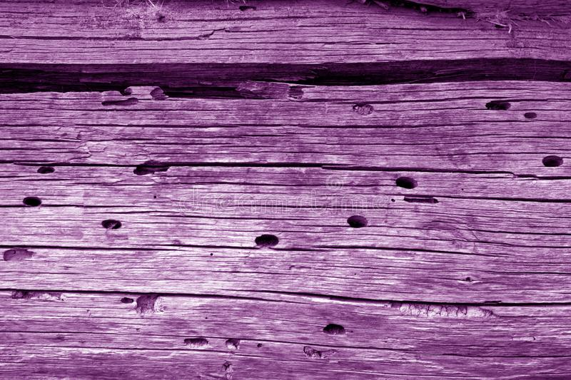 Wooden wall texture in purple color. Abstract background and texture for design, vintage, old, weathered, timber, tree, carpentry, natural, painted, materials stock photos