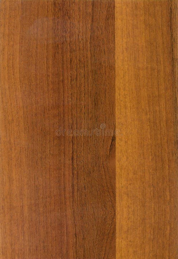 Wooden walnut Pegaso texture stock photo