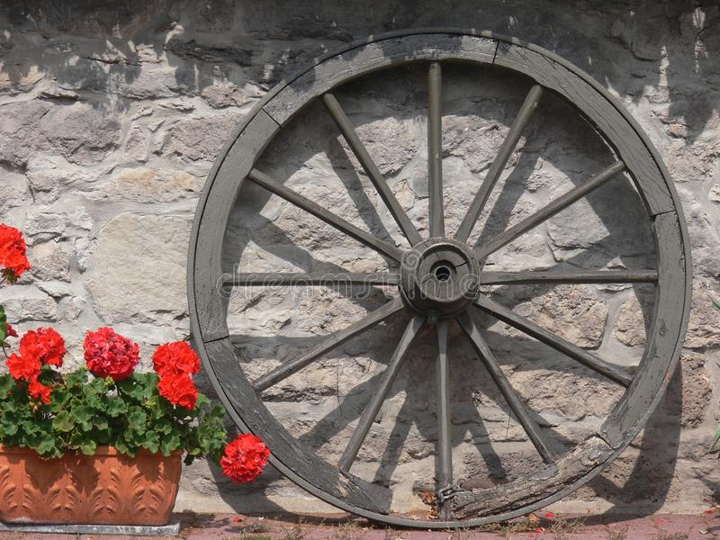 Wooden wheel with wooden spokes next to red flowers royalty free stock images