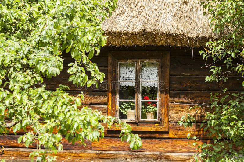 Blooming flowers on window. Podlasie region in Poland. stock image