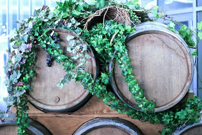 Wooden wine barrels for vineyards decorated with ivy leaves and bunches of grapes stock images