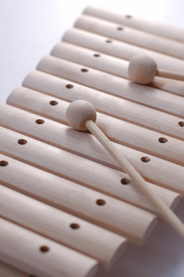 Free Wooden Xylophone Royalty Free Stock Photo - 6166255