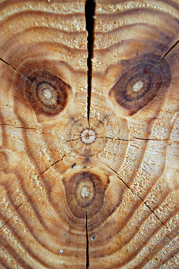 Woodface photos stock