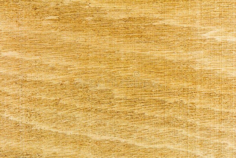 Woodgrain δασικό φυσικό υπόβαθρο ταπετσαριών στοκ εικόνα