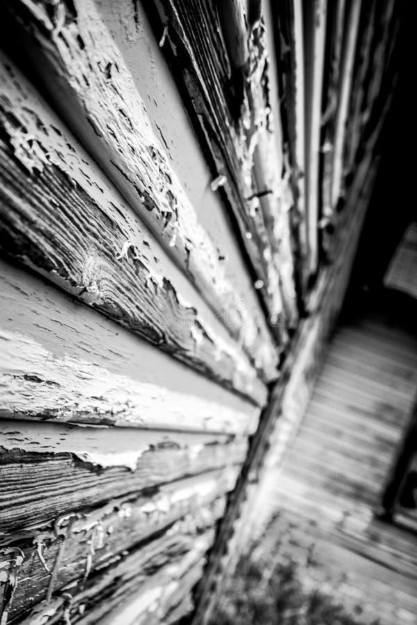 woodgrain arkivbild