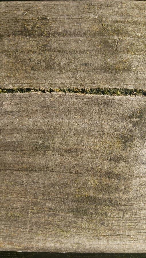 woodgrain fotografía de archivo