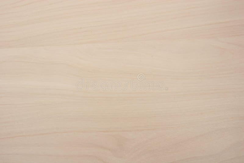 Woodgrain do pinheiro fotografia de stock royalty free