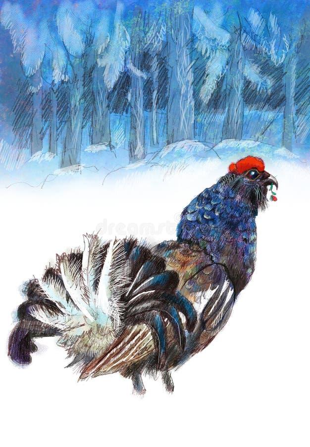 Woodgrouse ilustracja wektor