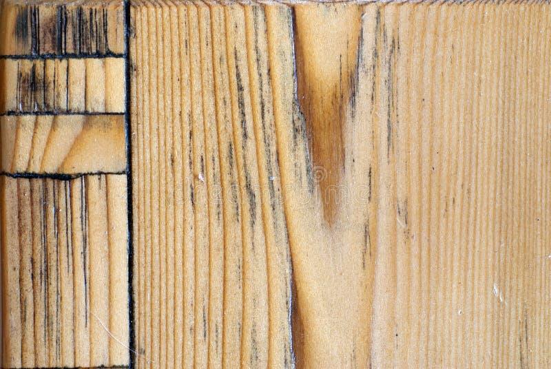woodiness images libres de droits