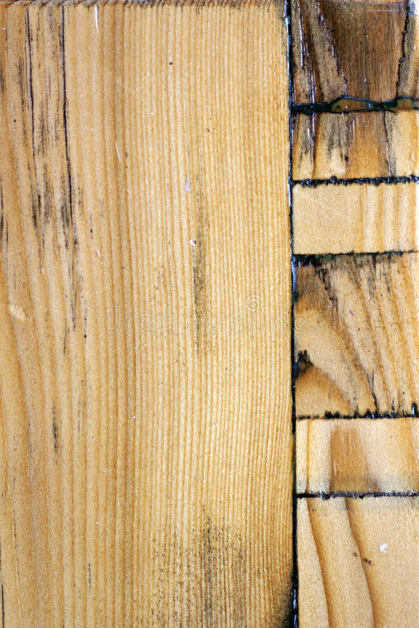 Woodiness royalty free stock photos