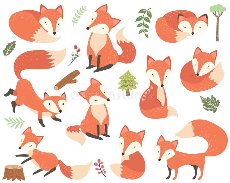Woodland Animal Fox Elements royalty free illustration