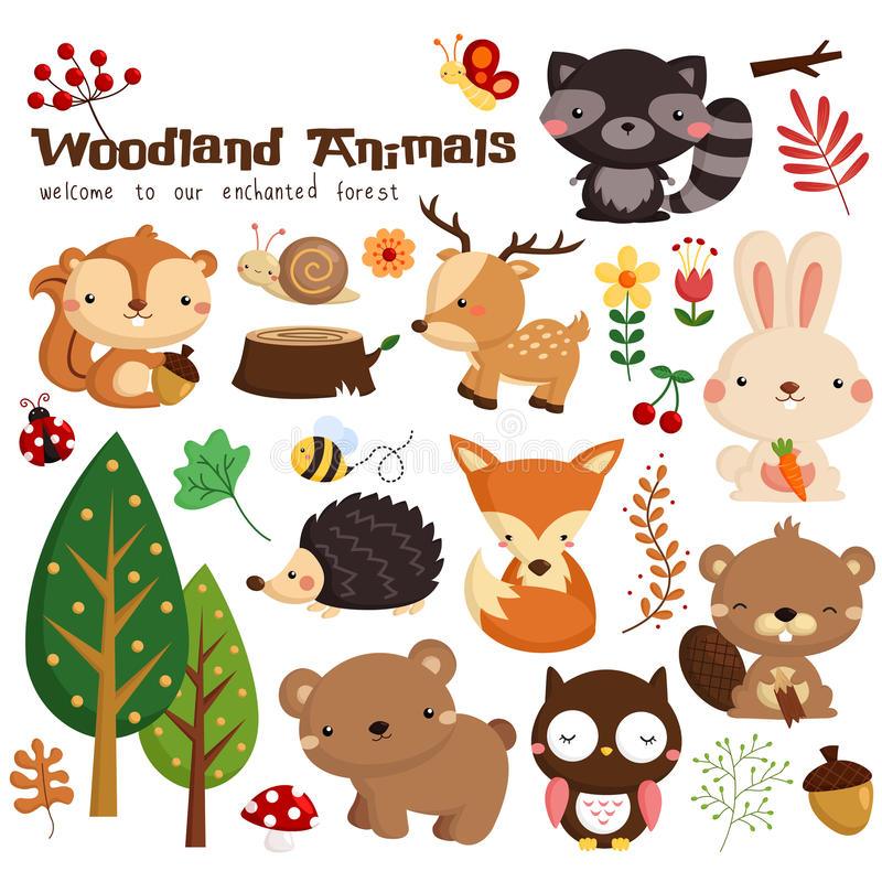 Woodland animal vector set stock images