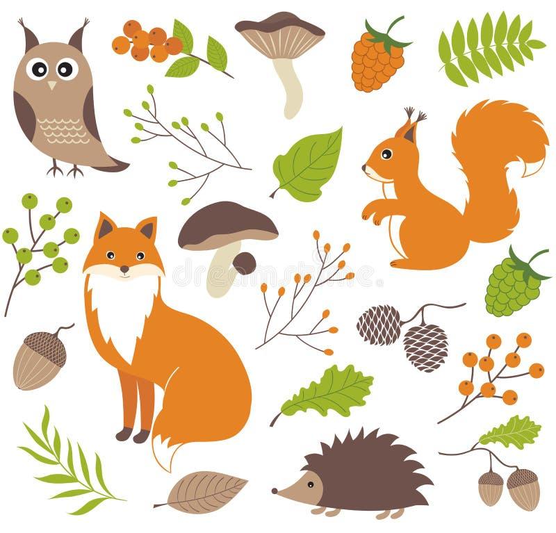 Woodland animals. Colourful vector set vector illustration