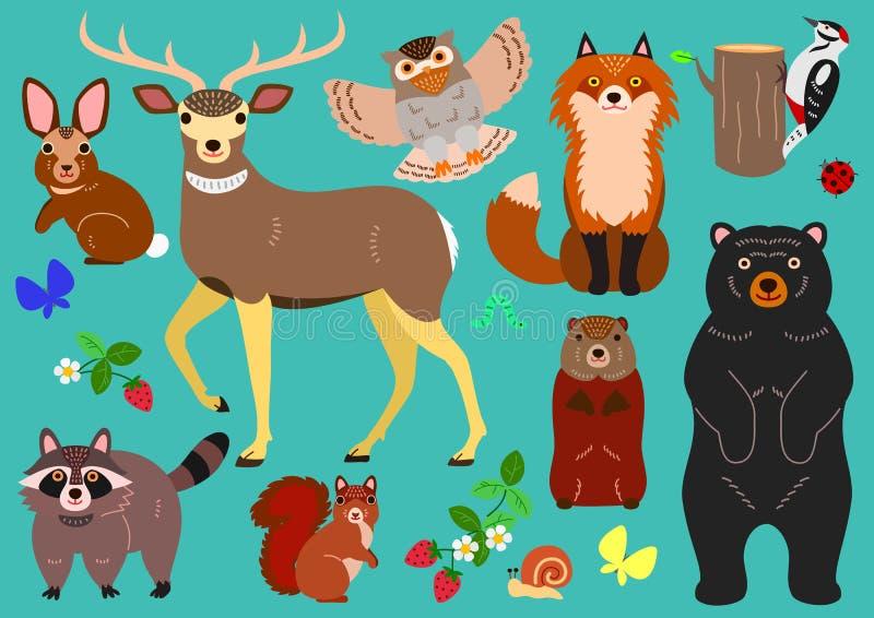 Woodland animals elements set vector illustration
