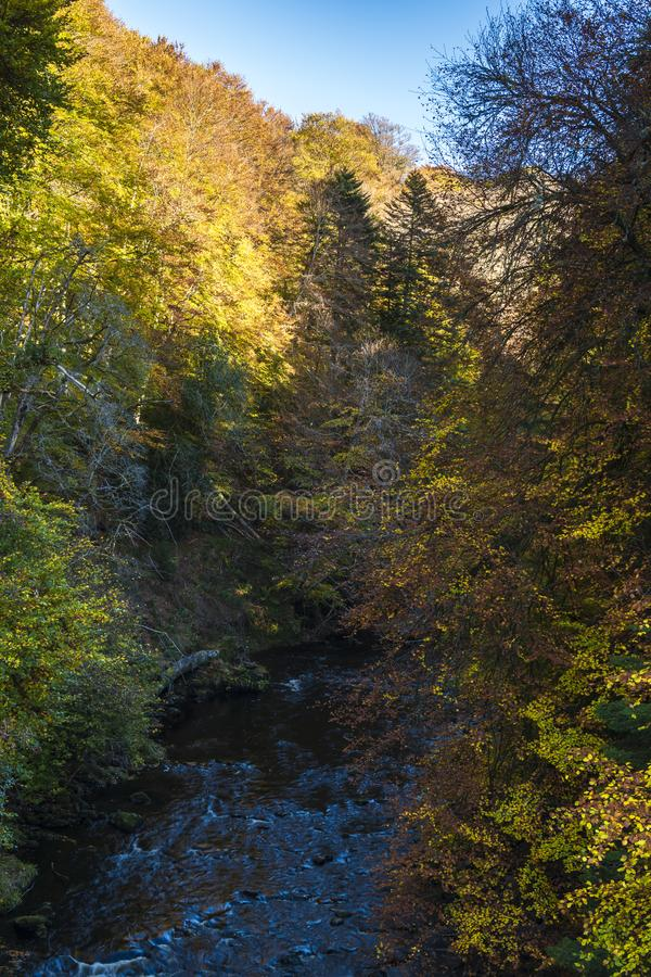 River Divie. The woodland in autumnal colour on the banks of the River Divie in Moray, Scotland 20 October 2018 stock photography