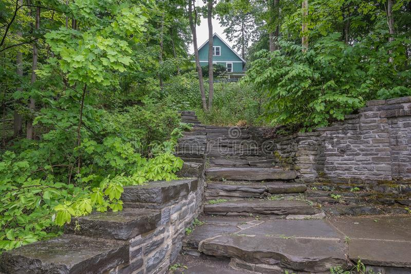 Woodland background and stone walkway in upstate New York. A stone walkway in the Finger Lakes region of upstate New York stock photos