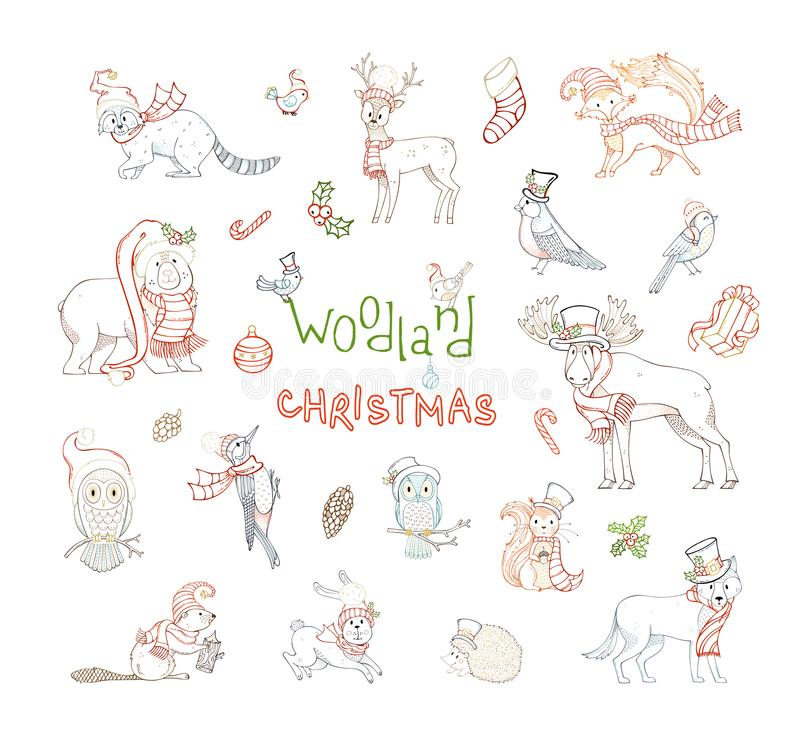 Woodland Christmas set. royalty free illustration