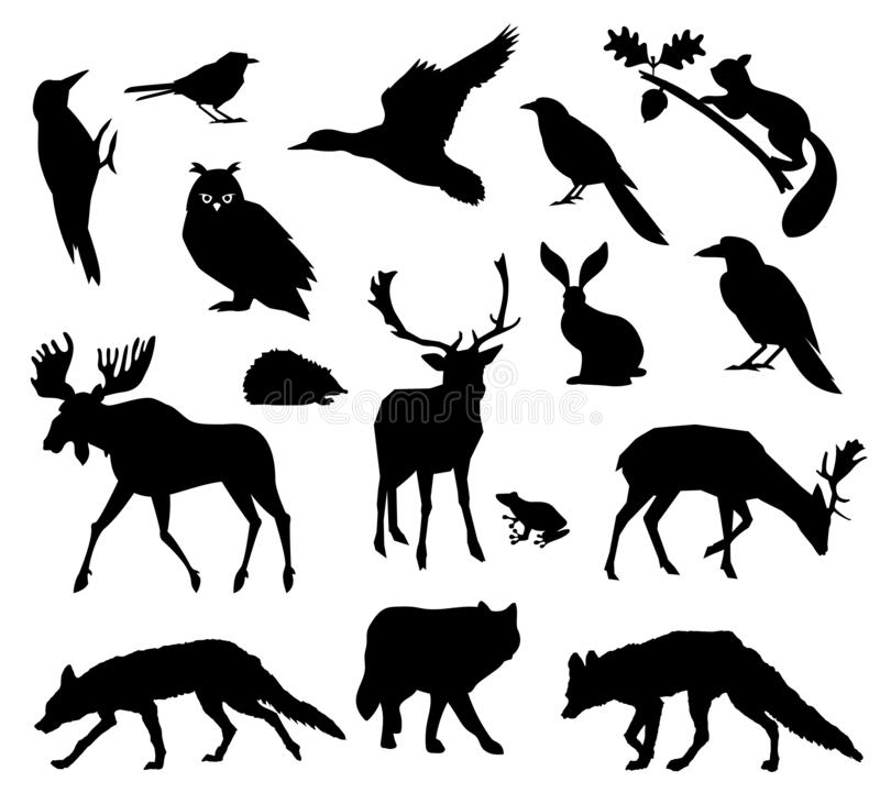 Woodland forest. Animals living in european forest. Vector icon set of silhouette. National park. stock illustration