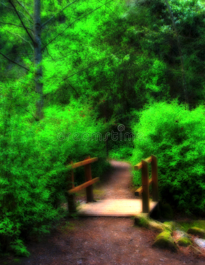 Download Woodland Landscape stock photo. Image of path, pathway - 2379578