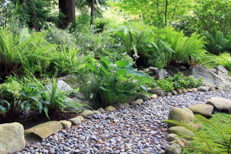 Woodland shade garden path royalty free stock image