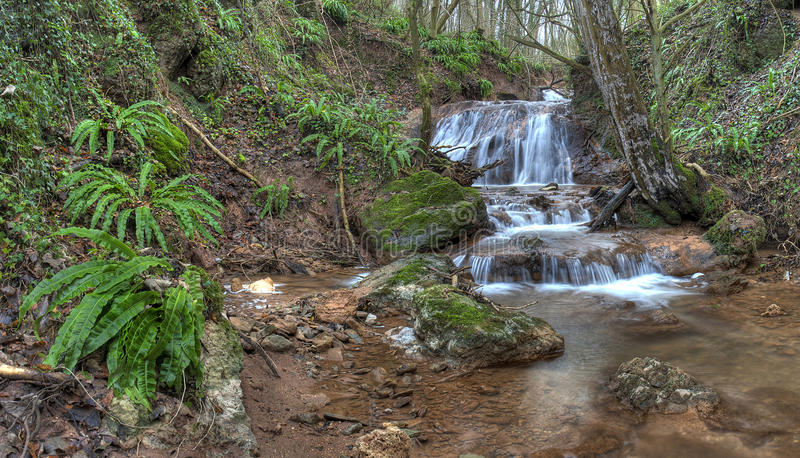 Woodland waterfall. Waterfall and ferns at Deaths Dingle, Eastham, Worcestershire, England royalty free stock photography
