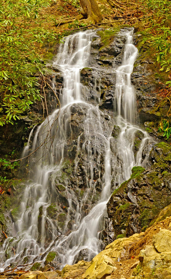 Download Woodland Waterfall In The Spring Stock Image - Image: 39284273