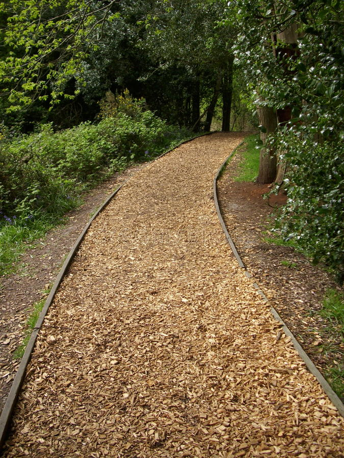 Woodland woodchip path. Wooden edged woodland ornamental woodchip path running through trees. Background of trees stock photos