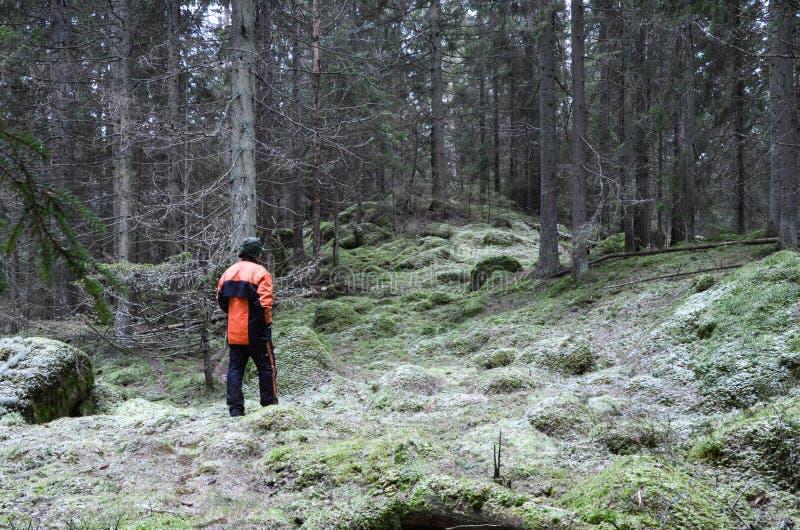 Woodman in profondità nella foresta immagini stock