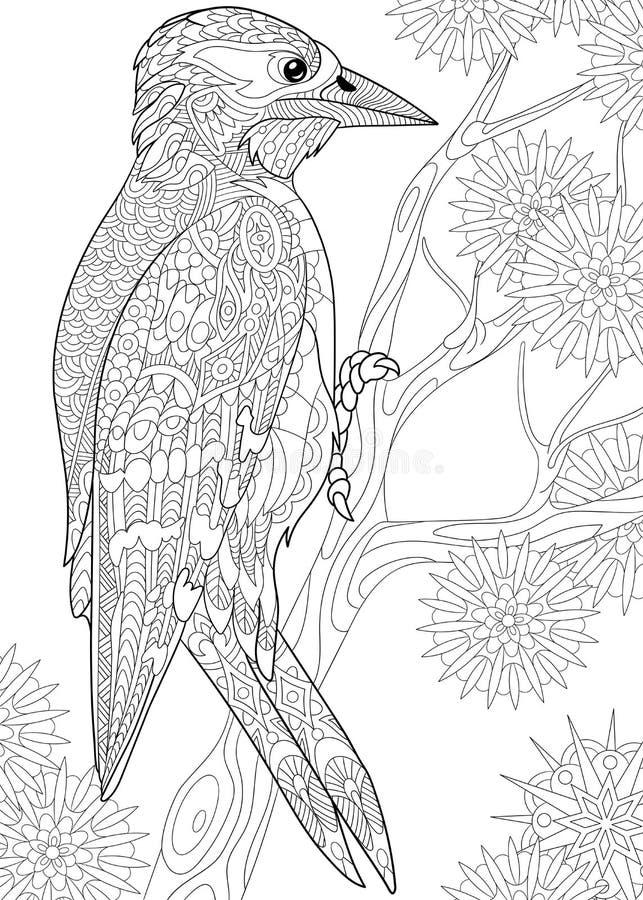 Woodpecker Zentangle стилизованный иллюстрация вектора