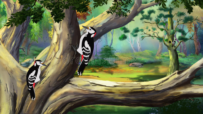 Woodpeckers в лесе иллюстрация штока