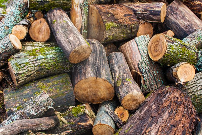 Woodpile της τεμαχισμένης ξυλείας Σωρός των ξύλινων κούτσουρων Συσσωρευμένη ξυλεία καυσόξυλου στοκ εικόνες
