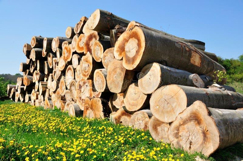 woodpile στοκ φωτογραφίες