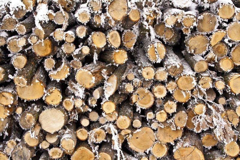 Woodpile fotografia stock libera da diritti