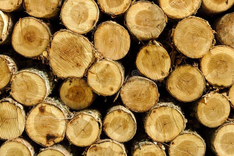 woodpile lizenzfreies stockbild