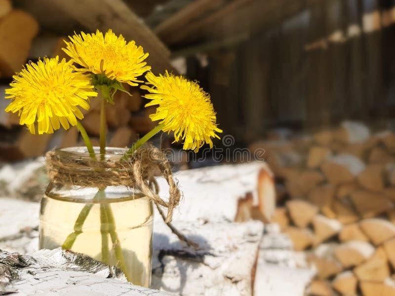 Woodpile brzozy ?upka Trzy żółtego dandelions w szklanym słoju E obraz stock