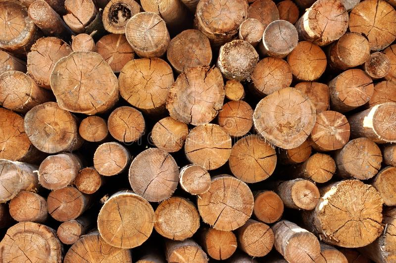 Woodpile of cut Lumber. For forestry industry royalty free stock photography
