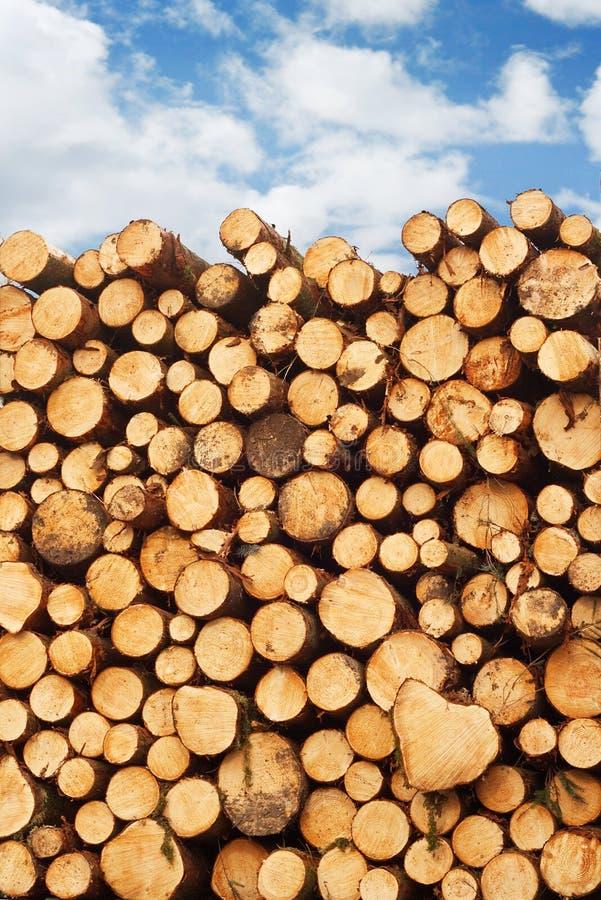 Pila de madera de construcción recientemente cortada fotos de archivo libres de regalías