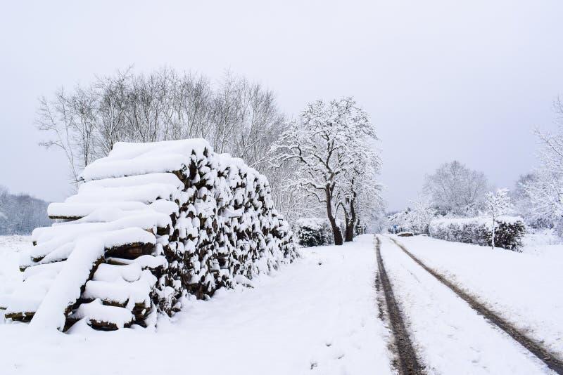 Woodpile Nevado en campo francés durante la estación/el invierno de la Navidad foto de archivo