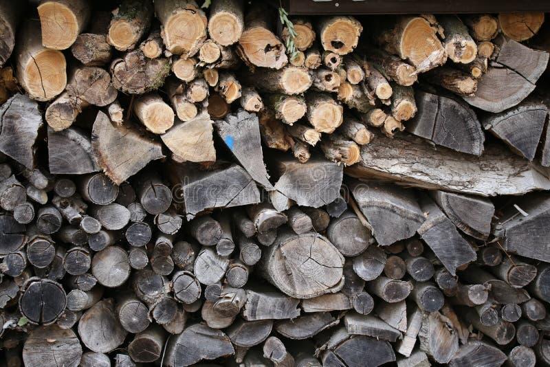 Woodpile am Rand des Waldes lizenzfreies stockfoto