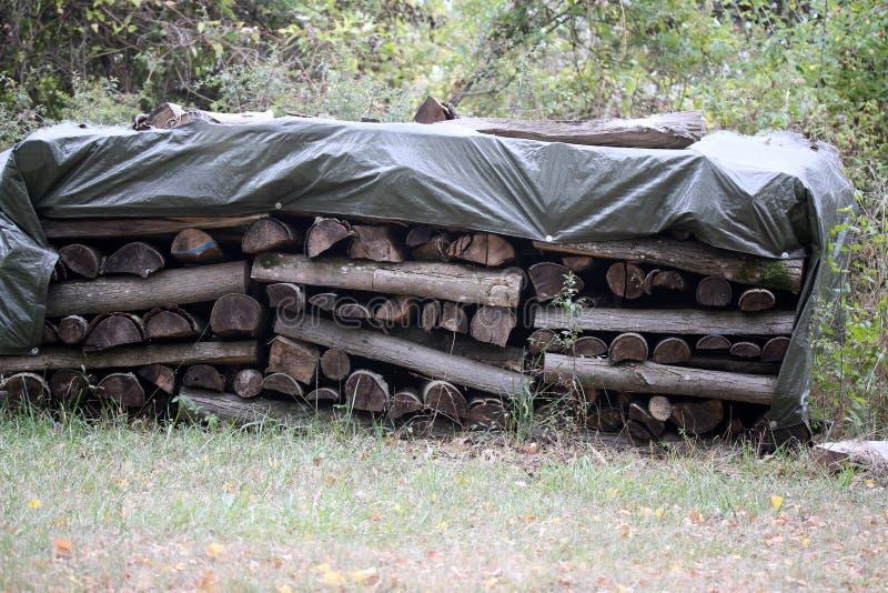 Woodpile am Rand des Waldes stockfotos