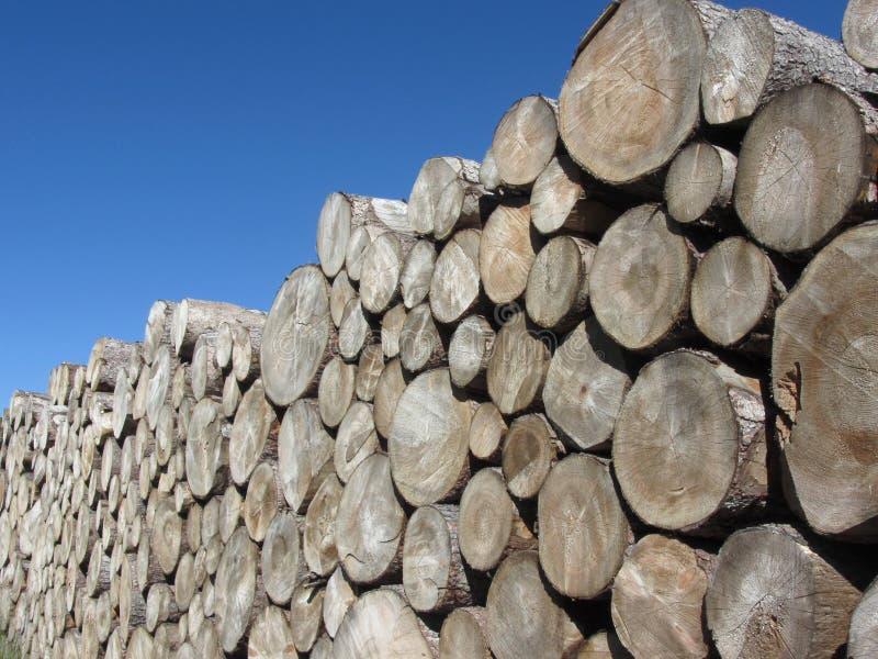 Woodpile van ronde logboeken tegen de blauwe hemel Gestapelde brandhoutstapel Gehakte houten boomstammen stock afbeelding