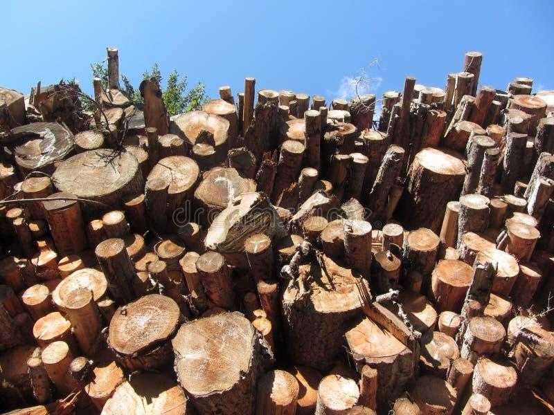 Woodpile van ronde logboeken tegen de blauwe hemel Gestapelde brandhoutstapel Gehakte houten boomstammen royalty-vrije stock foto's
