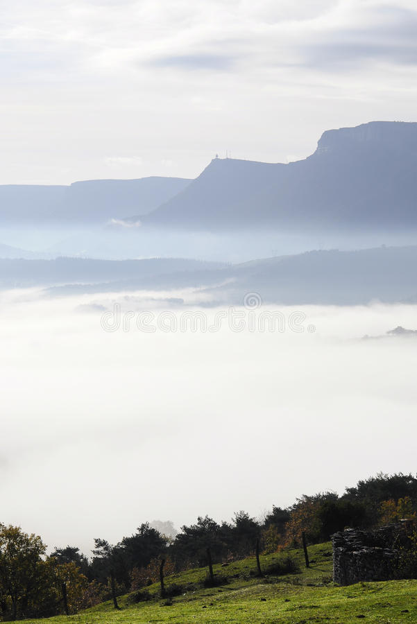 Download Woods And Fields Covered With Fog On A Winter Morning Stock Image - Image: 34600679