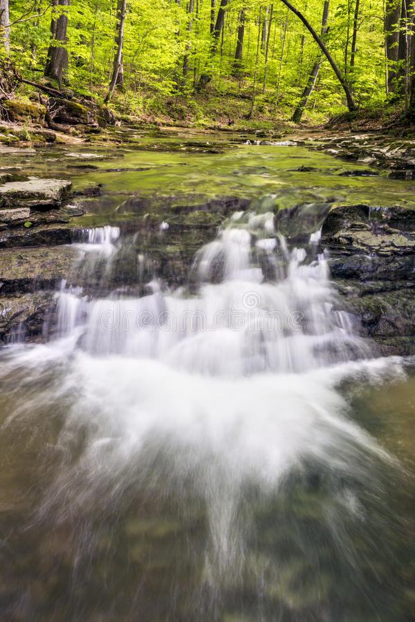 In the Woods. A small stream flows over rocky ledges and under a spring green canopy in rural Putnam County, Indiana stock photos