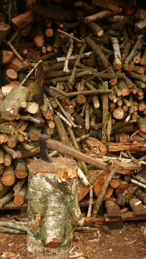 Woodshed in March royalty free stock images