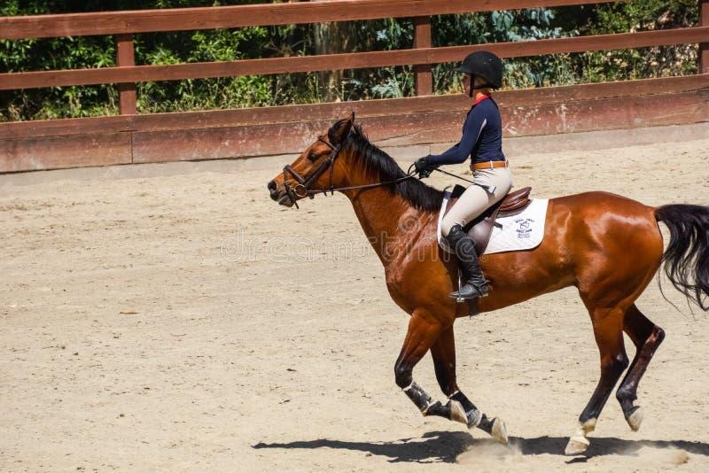 Woodside, CA/de V.S., Juni 2016 - Jong meisje paardrijden die, Wunderlich-het Park van de Provincie, de baai van San Francisco, C stock fotografie