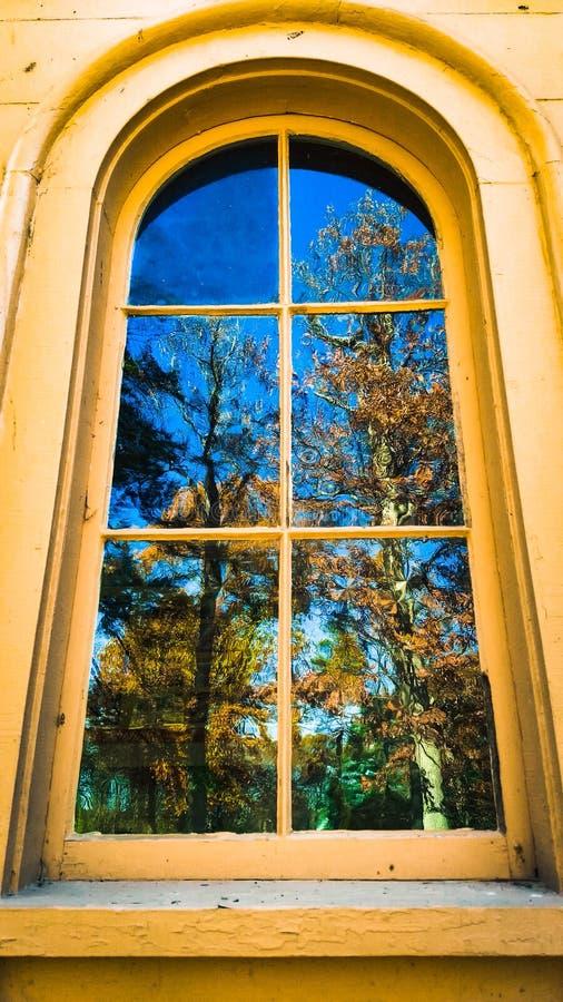 Woodsy okno obraz royalty free