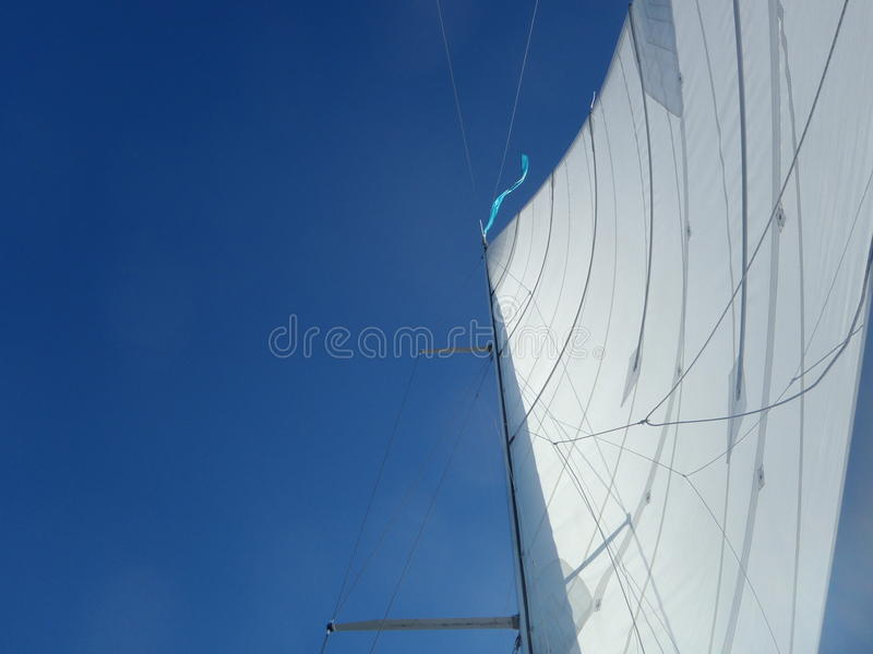woodwind стоковое фото rf