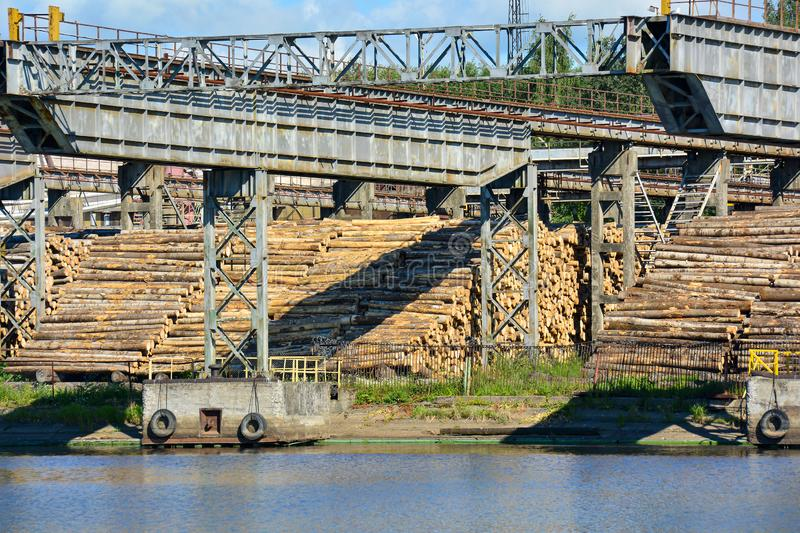 Woodworking plant on the river bank. Using the river to transport raw materials for processing. A lot of logs on the riverbank royalty free stock photos