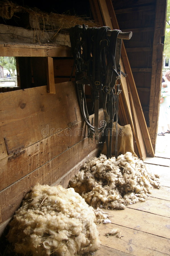 Wool in a barn. Sheared wool in an old barn royalty free stock images
